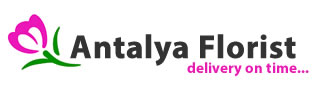 bouquets of lily in a fast and inexpensive flower delivery by order a bouquet in right now! florist in antalya Logo