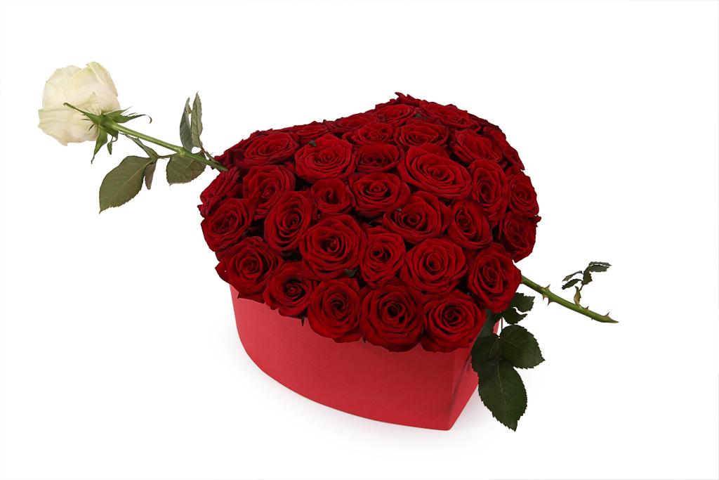 27 kırmızı gül buket Kutuda Kalp Arajman
