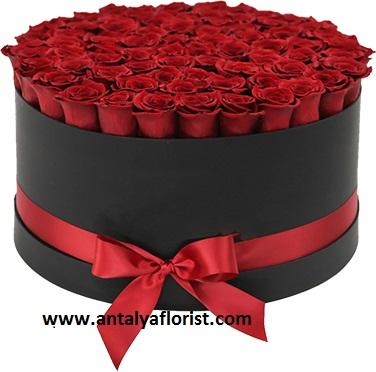 ayıcık ve kırmızı güller Kutuda 81 Adet Gül