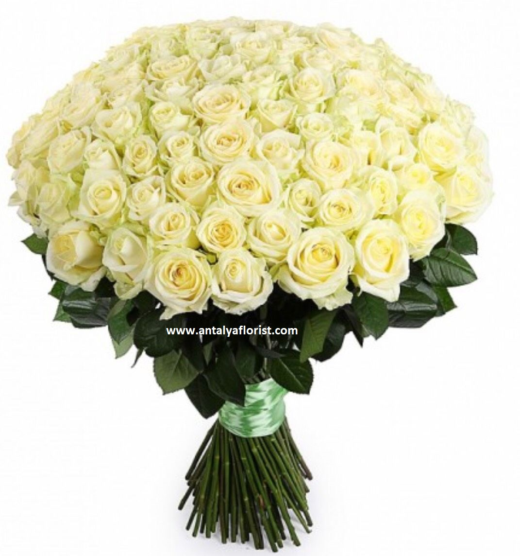 antalya flowers shop 101 Rose Bouquet White