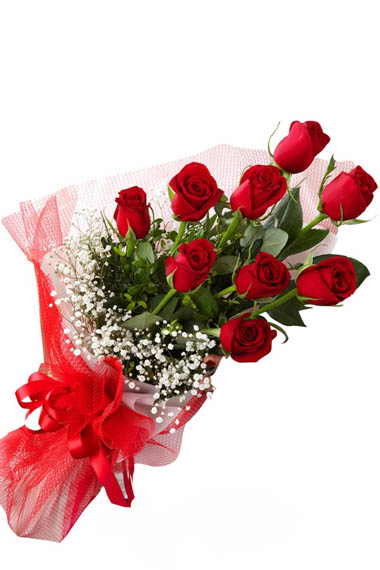 antalya flowers shop 9 Pc Red Rose Bouquet