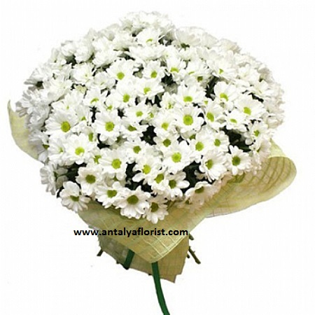 antalya flowers shop 29pc White Daisy Bouquet