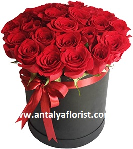 antalya flowers shop Box 25pc Red Rose