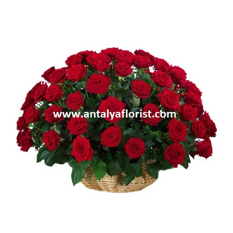 antalya flowers shop Basket 51pc Red Roses