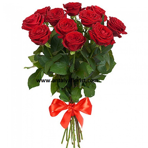 antalya flowers shop 11 Red Rosa