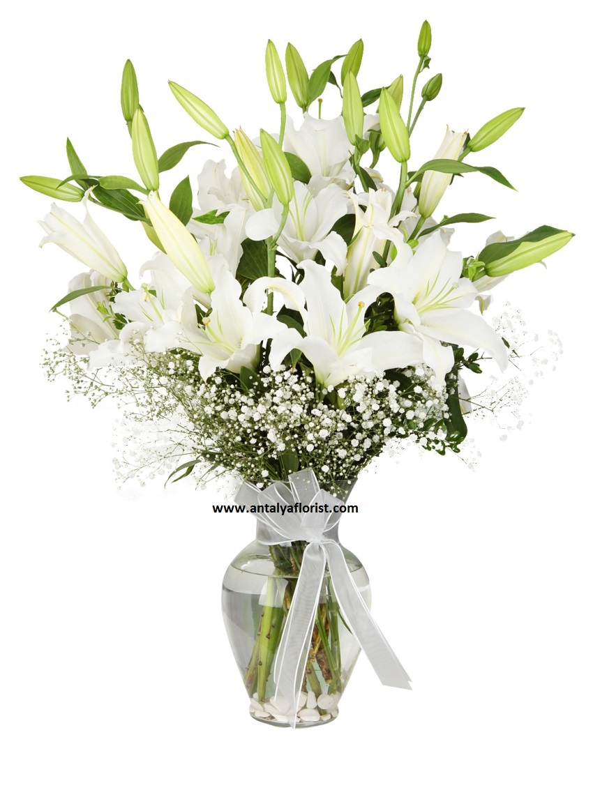 antalya flowers shop White Lilium Vase