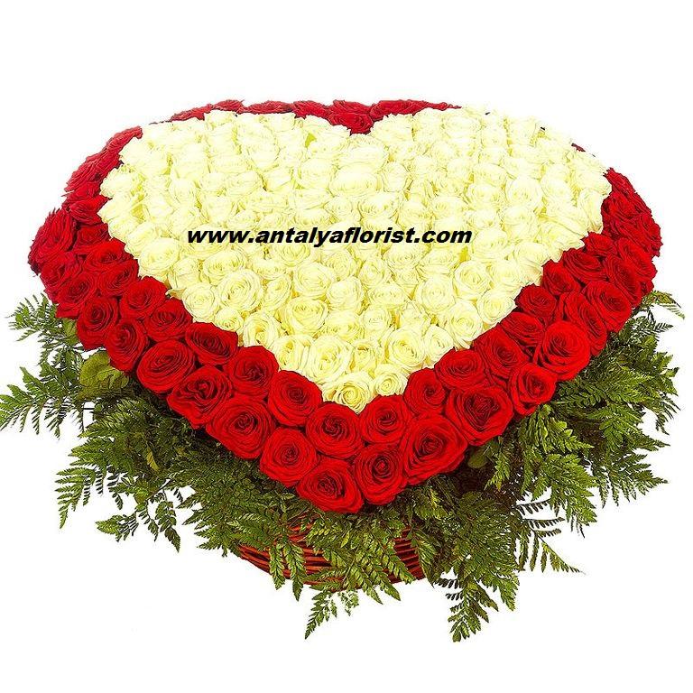 beyaz papatya buket Büyük Sepette 351 Kalp Gül